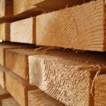 Dvigubo pjovimo mediena (5)